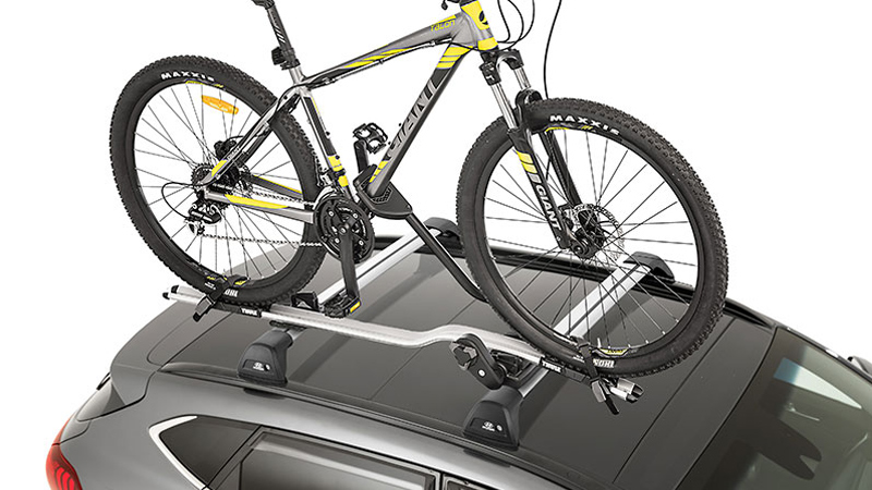 Thule bike rack (wheel on).